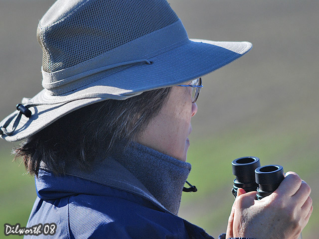 662 Bird Watcher
