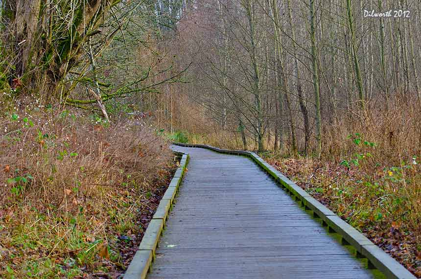 1049m Boardwalk at Nisqually