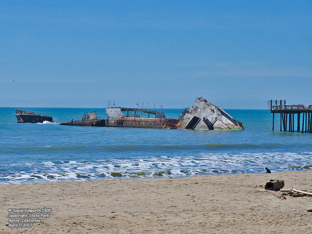 1305 Cement Ship